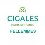 Les Cigales - Hauts-de-France - Hellemmes